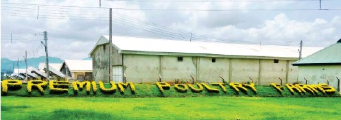 Rensource and Premium Poultry team up with Empower to deploy solar energy project to poultry farm