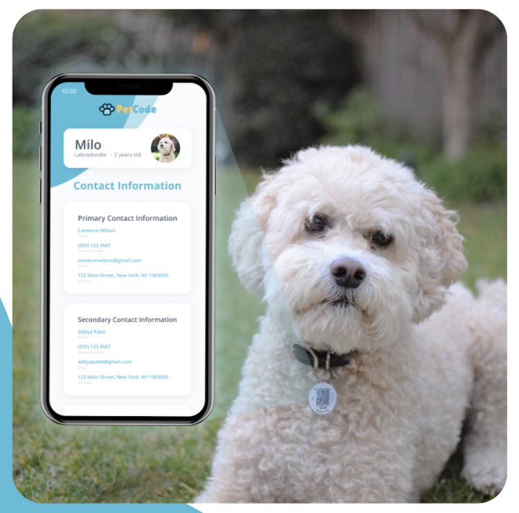 Introducing PetCode –The Ultimate Pet Management System