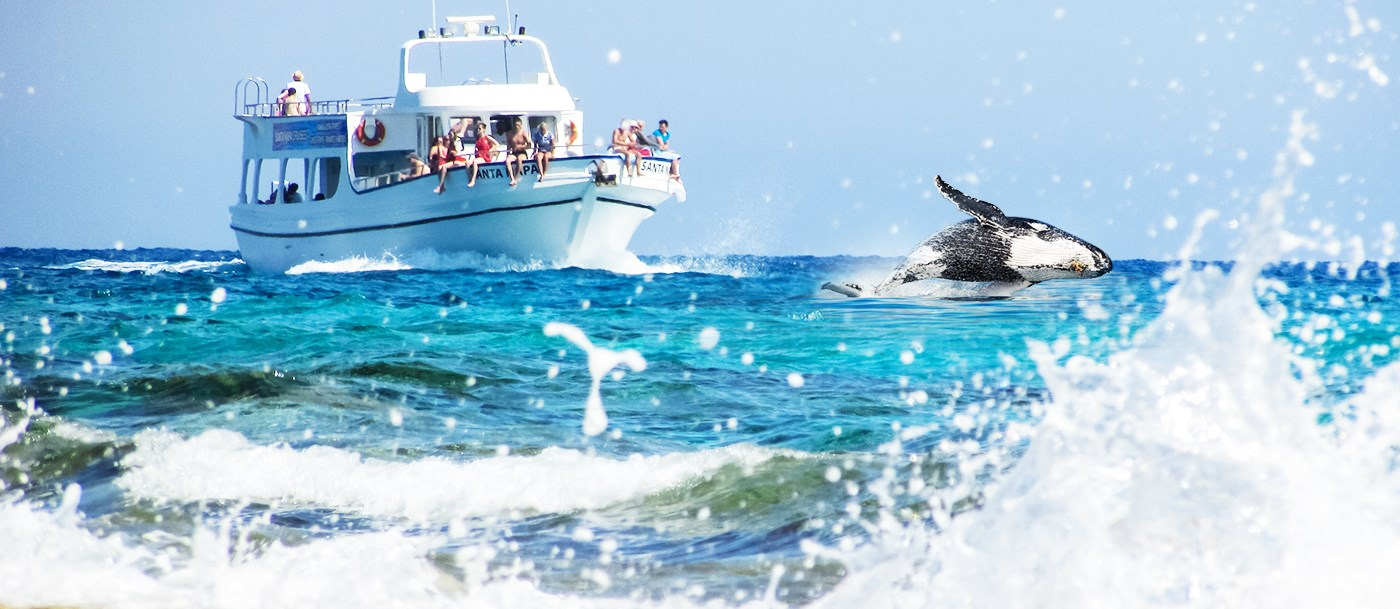 Explore Fraser Island onboard the best whale watching cruise in Hervey Bay
