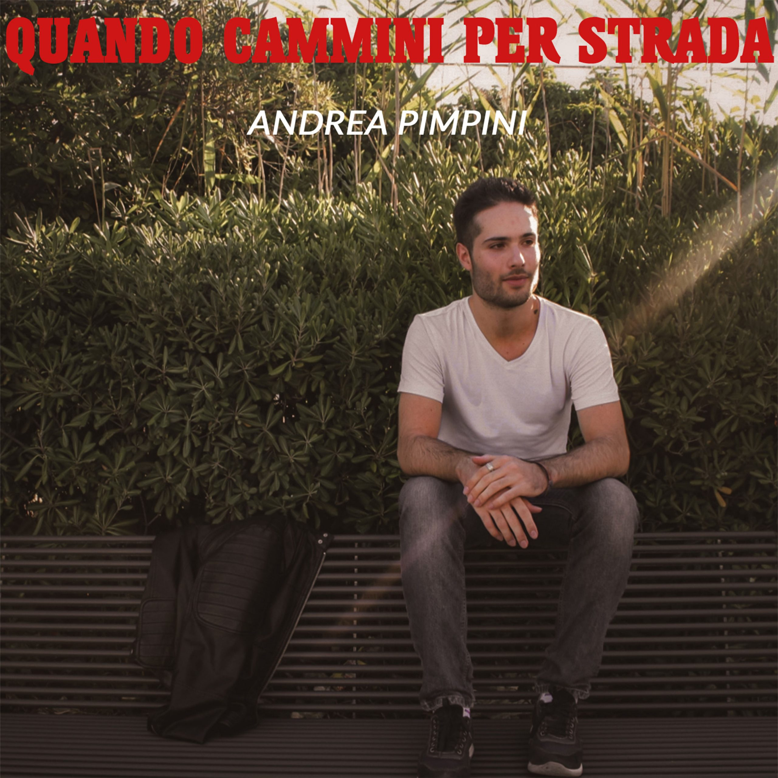 "Andrea Pimpini Publishes His New Pop/Rock Music Album ""Quando Cammini Per Strada"""