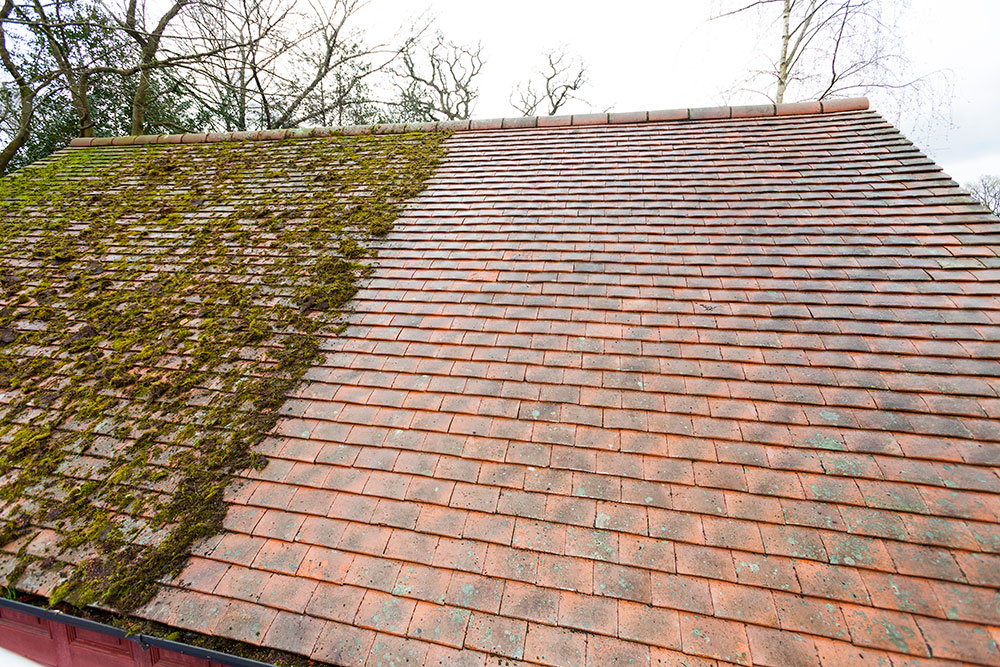 Just Fascias Now Offer Roof Cleaning and Moss Removal Throughout Kent and Surrey
