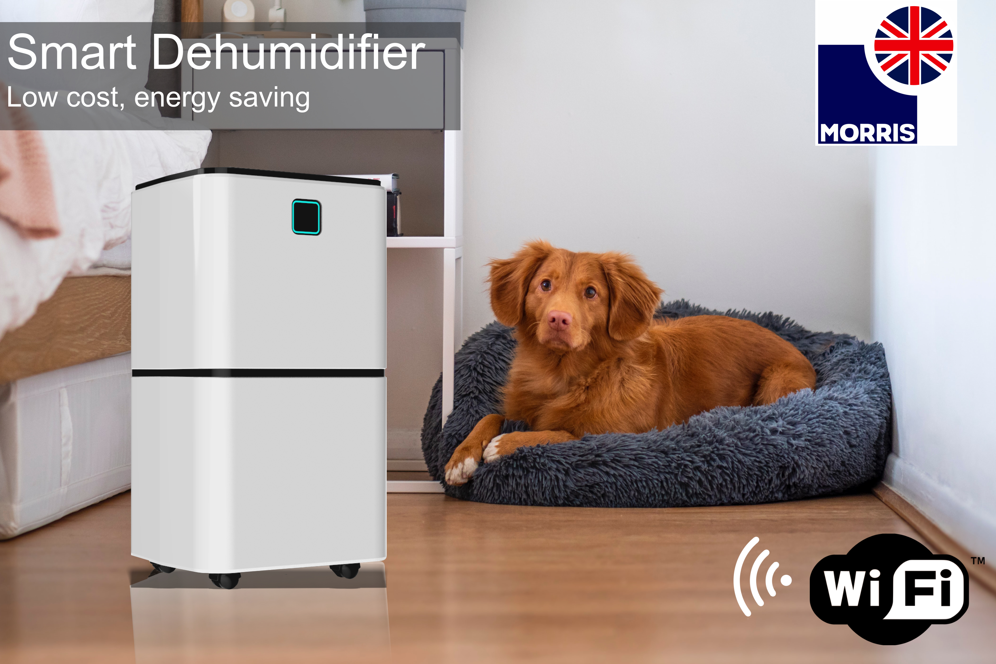 LED First Choice Launch Morris 12 Litre Smart Dehumidifier with Wi-Fi