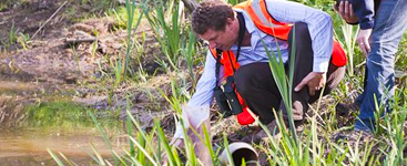 Experienced Indigo Surveys Offers Affordable, Quick and Reliable Ecology Surveys in the UK