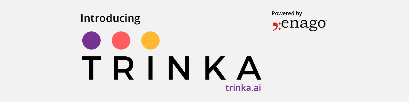 Trinka — World's Premier Academic & Technical Writing Assistant is Here!
