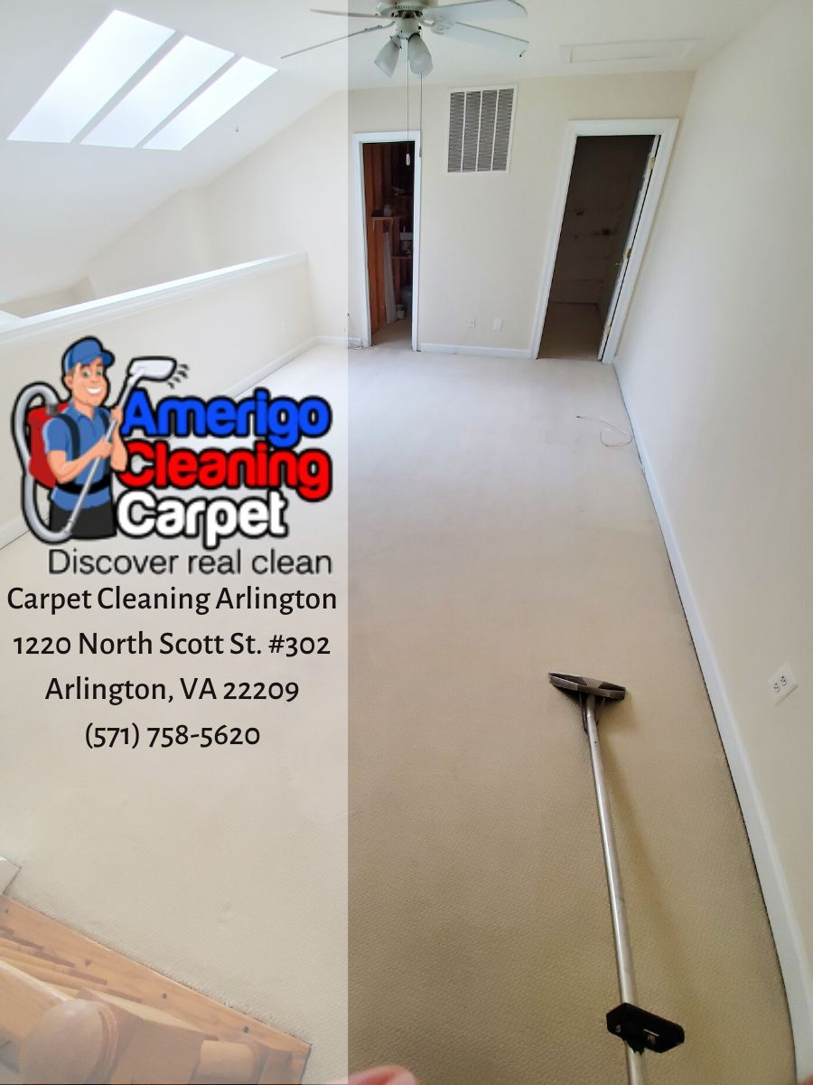 Carpet Cleaning Arlington Launched A Revived Website