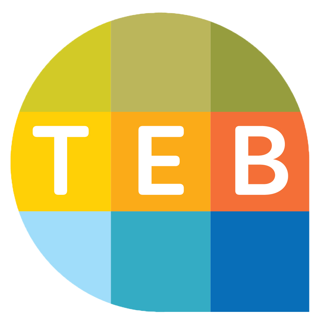 TEBillion Pulls Off 14 Strategic Alliances in Less Than Four Months