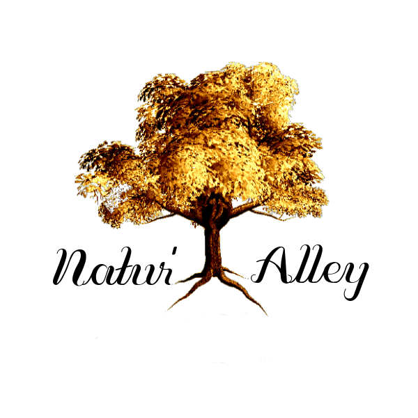 Natur'Alley unveils range of 100% plant-based life essentials
