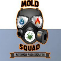 Mold Squad Launches Revamped Website