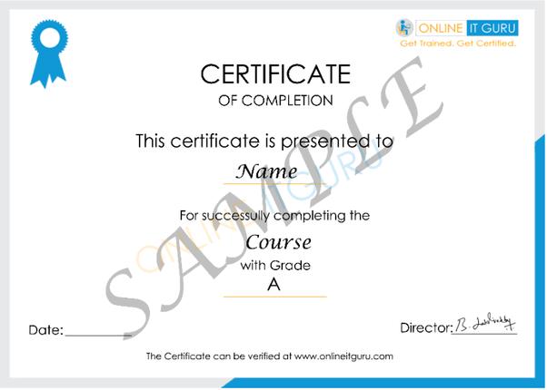 Growing a Certified Selenium testing engineer at OnlineITguru
