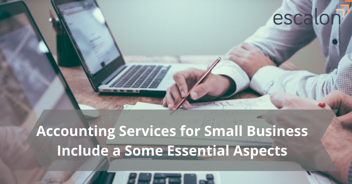 Accounting Services for Small Business Include a Few Essential Aspects