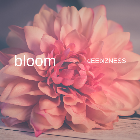 dEEbIZNESS Delivers Groovy, Melodic, & Eclectic Electronic LP 'Bloom'