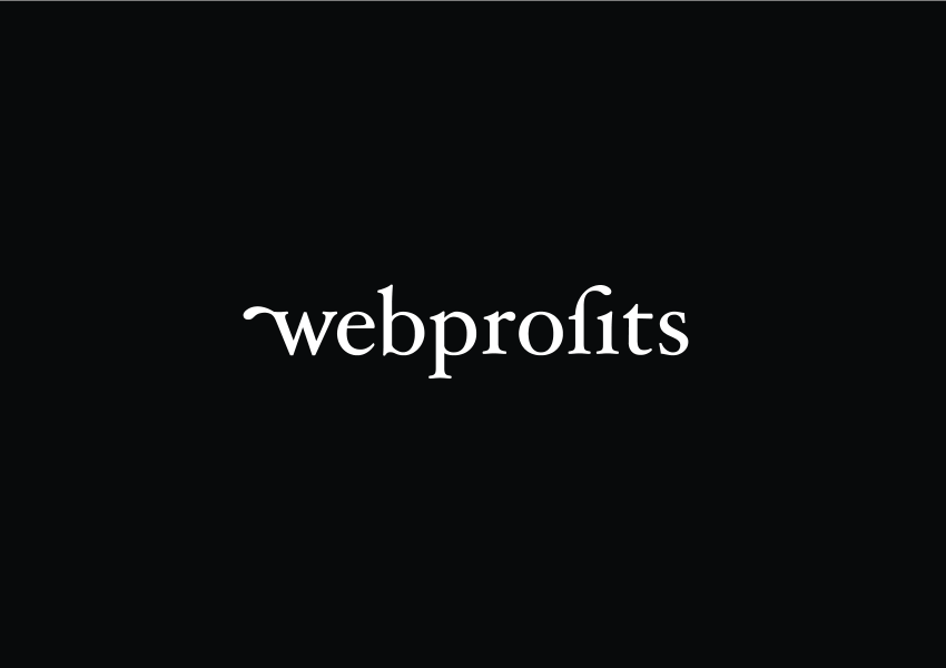 Webprofits Evolves Brand and Forges New Success in Turbulent Times
