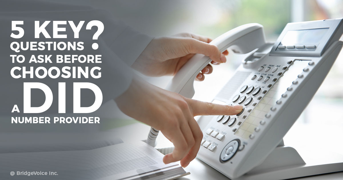 5 Key Questions to Ask Before Choosing a DID Number Provider