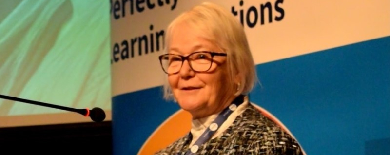 Increasing Effective Learning in the Public Sector